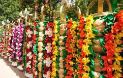 Festa dos Tabuleiros  - Tomar